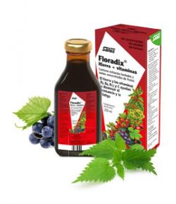Floradix Hierro + Vitaminas 250ml Hierro