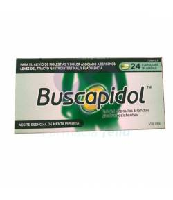 Buscapidol 0.2mg Capsulas Gastrorresistentes, 24 uds Gases